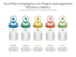 Five Pillars For Project Management Efficiency Metrics Infographic Template