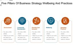 Five Pillars Of Business Strategy Wellbeing And Practices