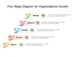 Five Stage Diagram For Organizational Growth