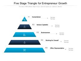Five Stage Triangle For Entrepreneur Growth