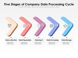 Five Stages Of Company Data Processing Cycle