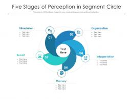 Five Stages Of Perception In Segment Circle