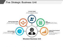 Five Strategic Business Unit Powerpoint Guide