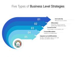Five Types Of Business Level Strategies