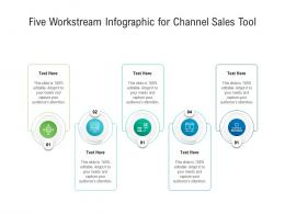 Five Workstream For Channel Sales Tool Infographic Template