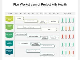Five Workstream Of Project With Health