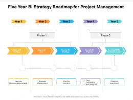 Five Year Bi Strategy Roadmap For Project Management