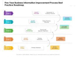 Five Year Business Information Improvement Process Best Practice Roadmap