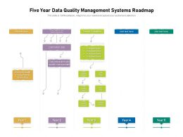 Five Year Data Quality Management Systems Roadmap