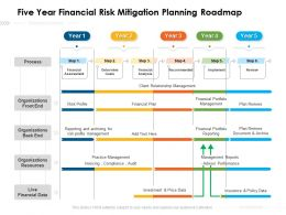 Five Year Financial Risk Mitigation Planning Roadmap