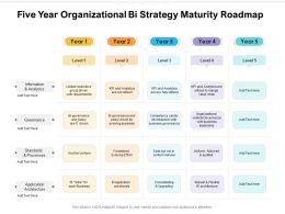 Five Year Organizational Bi Strategy Maturity Roadmap