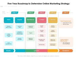 Five Year Roadmap To Determine Online Marketing Strategy