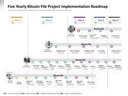 Five Yearly Bitcoin File Project Implementation Roadmap