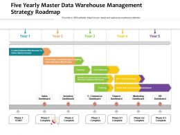 Five Yearly Master Data Warehouse Management Strategy Roadmap
