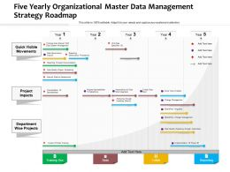 Five Yearly Organizational Master Data Management Strategy Roadmap