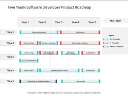 Five Yearly Software Developer Product Roadmap
