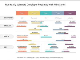 Five Yearly Software Developer Roadmap With Milestones