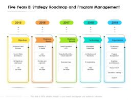 Five Years BI Strategy Roadmap And Program Management
