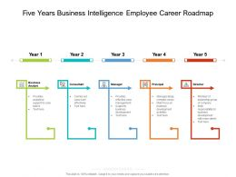 Five Years Business Intelligence Employee Career Roadmap
