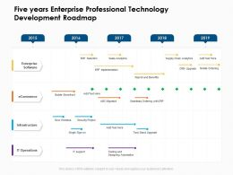 Five Years Enterprise Professional Technology Development Roadmap