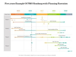 Five Years Example Of PMO Roadmap With Planning Execution