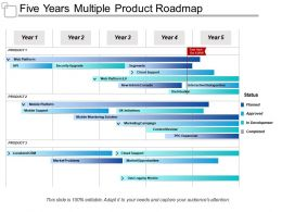 Five Years Multiple Product Roadmap