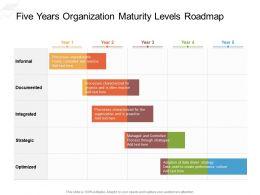 Five Years Organization Maturity Levels Roadmap
