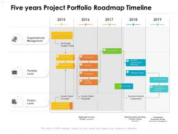 Five Years Project Portfolio Roadmap Timeline