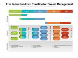 Five Years Roadmap Timeline For Project Management