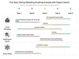 Five Years Startup Marketing Roadmap Example With Organic Search
