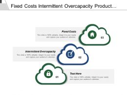 Fixed Costs Intermittent Overcapacity Product Different Brand Identity