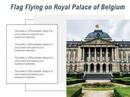 Flag Flying On Royal Palace Of Belgium