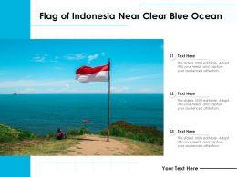 Flag Of Indonesia Near Clear Blue Ocean