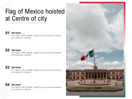 Flag Of Mexico Hoisted At Centre Of City