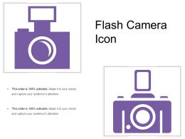 Flash Camera Icon