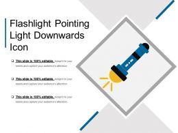Flashlight Pointing Light Downwards Icon