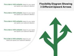 flexibility_diagram_showing_3_different_upward_arrows_Slide01