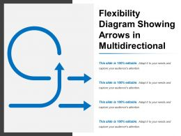 flexibility_diagram_showing_arrows_in_multidirectional_Slide01