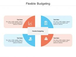 Flexible Budgeting Ppt Powerpoint Presentation Layouts Infographics Cpb
