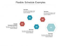 Flexible Schedule Examples Ppt Powerpoint Presentation Model Icons Cpb
