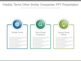 Flexible Terms Other Similar Companies Ppt Presentation