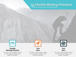 Flexible Working Practices Ppt Powerpoint Presentation Gallery Background Designs Cpb