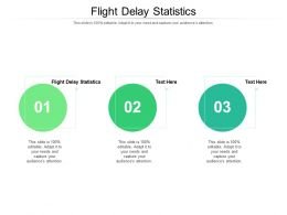Flight Delay Statistics Ppt Powerpoint Presentation Summary Examples Cpb