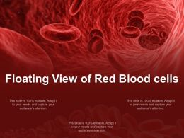 Floating View Of Red Blood Cells