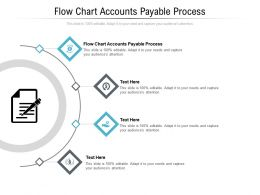Flow Chart Accounts Payable Process Ppt Powerpoint Presentation Professional Themes Cpb