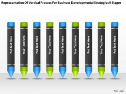 Flow Chart Business Process For Developmental Strategies 9 Stages Powerpoint Slides