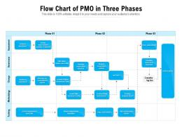 Flow Chart Of PMO In Three Phases