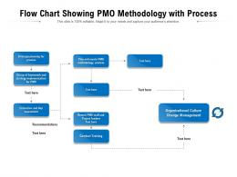Flow Chart Showing PMO Methodology With Process