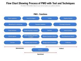 Flow Chart Showing Process Of PMO With Tool And Techniques