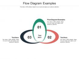 Flow Diagram Examples Ppt Powerpoint Presentation Infographics Ideas Cpb